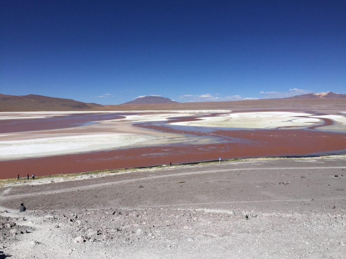 Les eaux rouges et le sel blanc de la Laguna Colorada